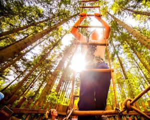 Zipline Treetop Adventure, North Myrtle Beach - 2 Hours 30 Minutes