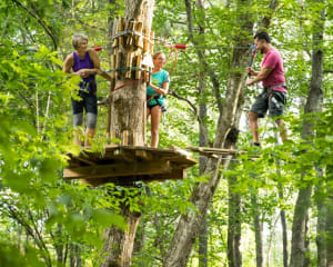 Zipline Treetop Adventure Virginia, Alexandria - 2 Hours 30 Minutes