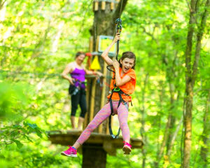Zipline Treetop Adventure, Richmond, Williamsburg, 2.5 Hours