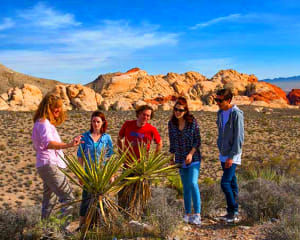 Jeep Tour Red Rock Canyon - 4 Hours (Includes Hotel Shuttle)