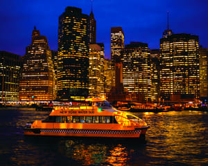 NYC Helicopter Tour & Statue of Liberty Cruise - VIP Evening Package