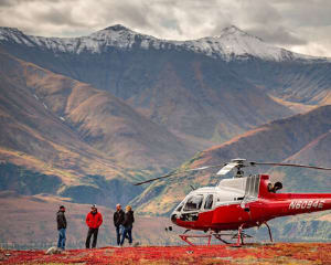 Denali Flight and Glacier Landing - 2 Hours