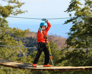 Ziplining Big Bear Lake, Weekday - 3 Hours