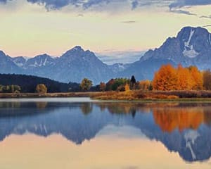 Jackson Hole Summer & Fall Wildlife Sunrise Safari, Grand Teton National Park - Half Day