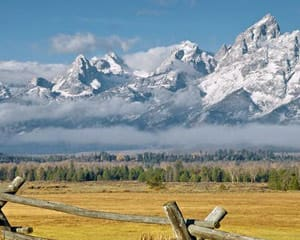 Jackson Hole Wildlife Full Day Safari - Grand Teton National Park (Private Trip for up to 5 People!)