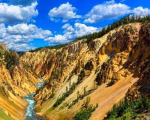 Jackson Hole Full Day Safari, Yellowstone National Park - Full Day