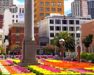 San Francisco Luxury Coach Tour, Grand City Tour - 3 Hours 30 Minutes