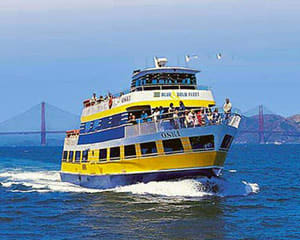 San Francisco Luxury Coach Tour, Muir Woods National Monument with Sausalito Ferry Return - 3 Hours 30 Minutes
