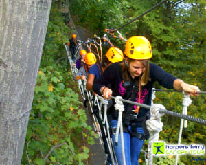 Ziplining Harpers Ferry, 8 Zip Adventure - 2 Hours 30 Minutes (Potomac Pass or Adventure Park Add on for Free!)