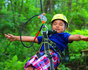 2 Person Deal: Ziplining Harpers Ferry, 8 Zip Adventure - 2 Hours 30 Minutes (Potomac Pass or Adventure Park Add on for Free!)