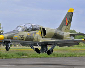 Fly an L-39 Jet Fighter, Tampa - 60 Minutes