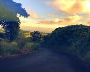 Beginners Guided Hike Oahu