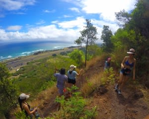 Intermediate Guided Hike Oahu - 2 Hours