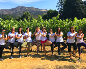 San Francisco Private Wine Tour, Sonoma County (Up to 4 people) - Full Day