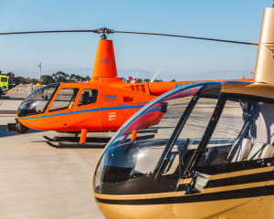 Private Helicopter Tour Newport Beach, OC Triangle - 25 Minutes (4 Passengers)