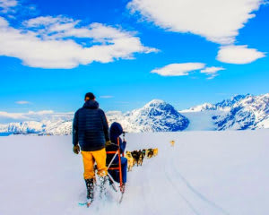 Helicopter Tour Knik River Valley with Glacier Landing and Dogsled Tour, Anchorage - 2 Hours