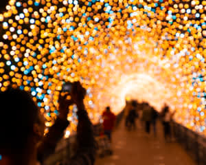 Dallas Holiday Lights Sightseeing Tour - 2 Hours