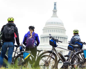 Washington DC Monumental e-Bike Tour - 3 Hours