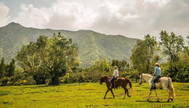 Horseback Ride and Mountain Pool Adventure, Kauai - 2 Hour