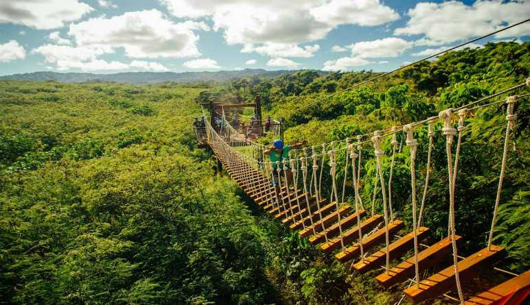 Zipline Oahu Bridge