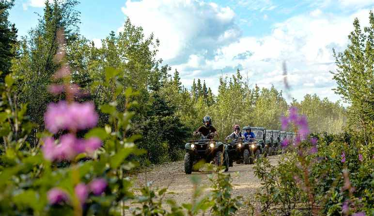 Two Rider ATV Guided Tour Denali, Trailblazer Adventure - 3 Hours 30 Mins (Denali Shuttle Available!)