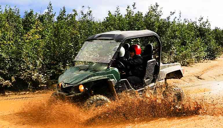 Two-Rider ATV Guided Tour Denali, Wilderness Adventure - 90 Mins (Denali Shuttle Available!)