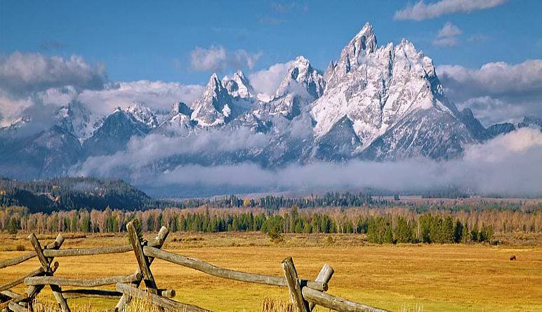 Jackson Hole Wildlife Full Day Safari, Grand Teton National Park (Private Trip for up to 5 People!) - Full Day