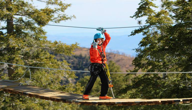 Ziplining Big Bear Lake Fun