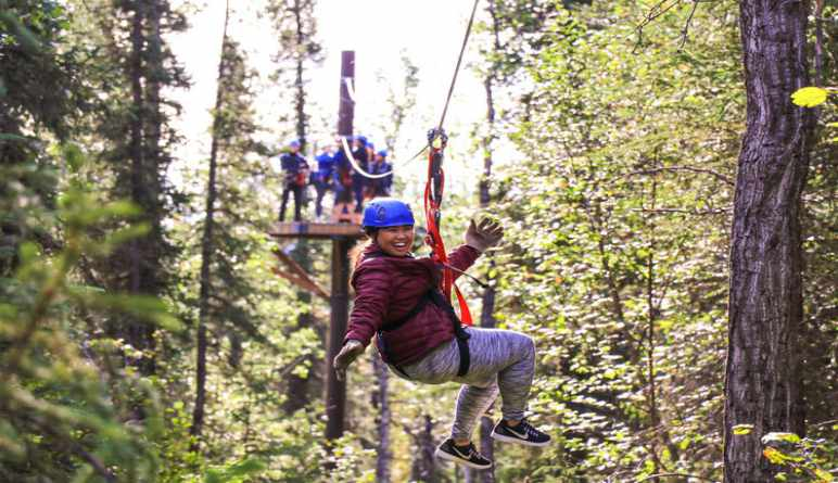 Ziplining Denali, 7 Zip Adventure - 3 Hours (Denali Shuttle Available!)