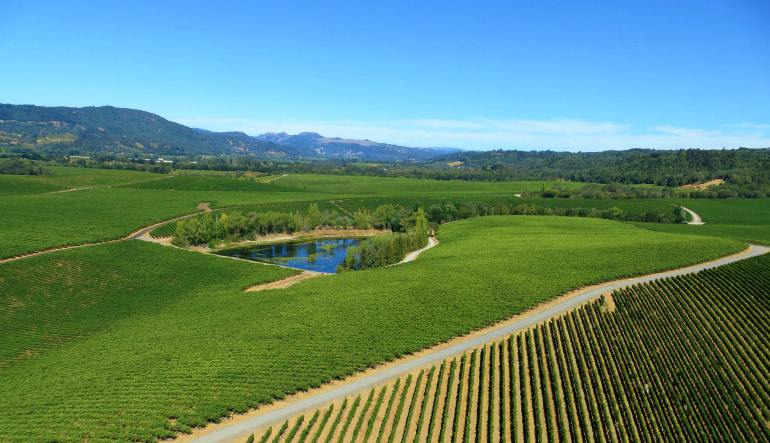Helicopter Ride Sonoma County - 30 Minute Tour With Wine Tasting