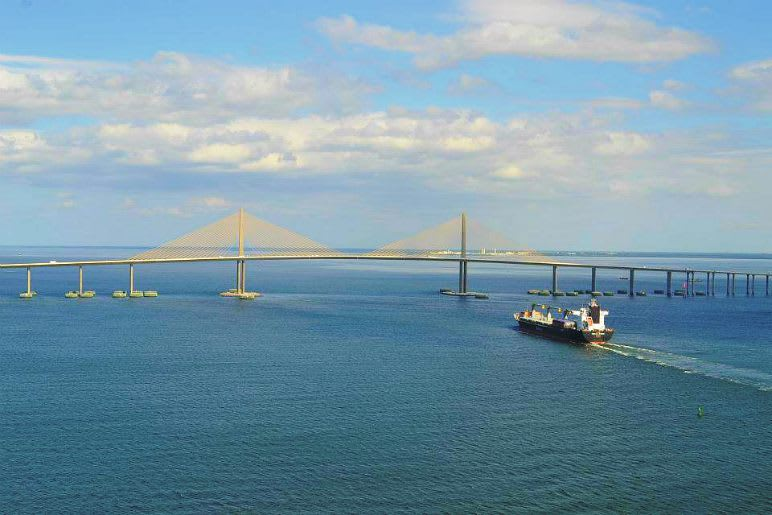 Helicopter Ride, Tampa Bay and Downtown Tour
