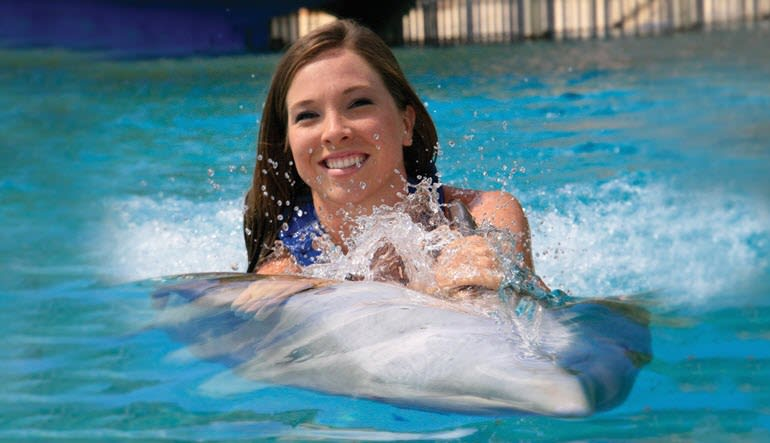 Dolphin Royal Swim Hawaii with Admission to Sea Life Park - 30 Minute Swim
