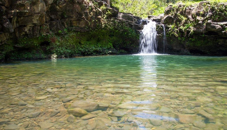 Waterfall and Zipline Tour Maui