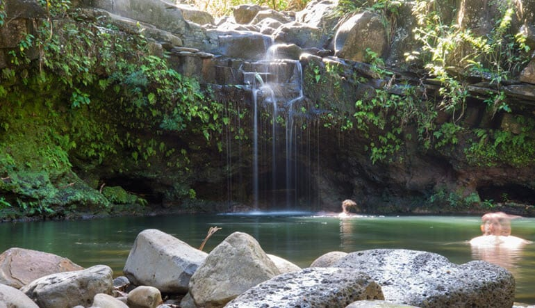 Waterfall Hike and Zipline Tour Maui - Half Day