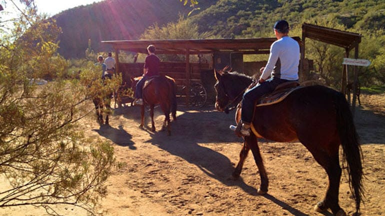 Horseback Riding Phoenix - 2 Hours 30 Minutes