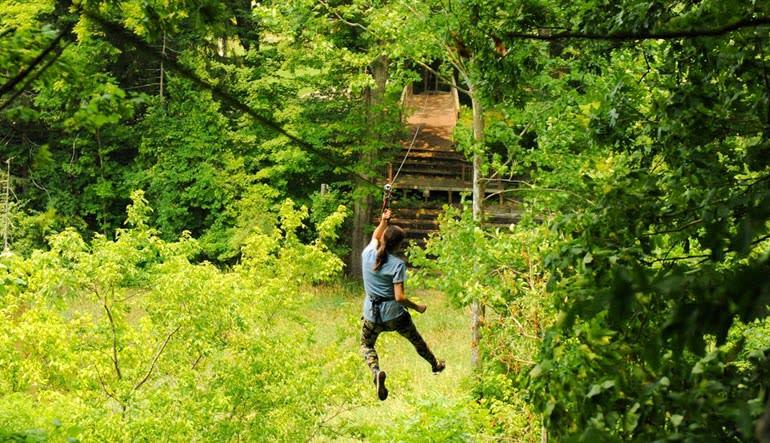 Zipline Treetop Adventure