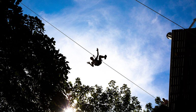 Zipline Treetop Adventure Shadow