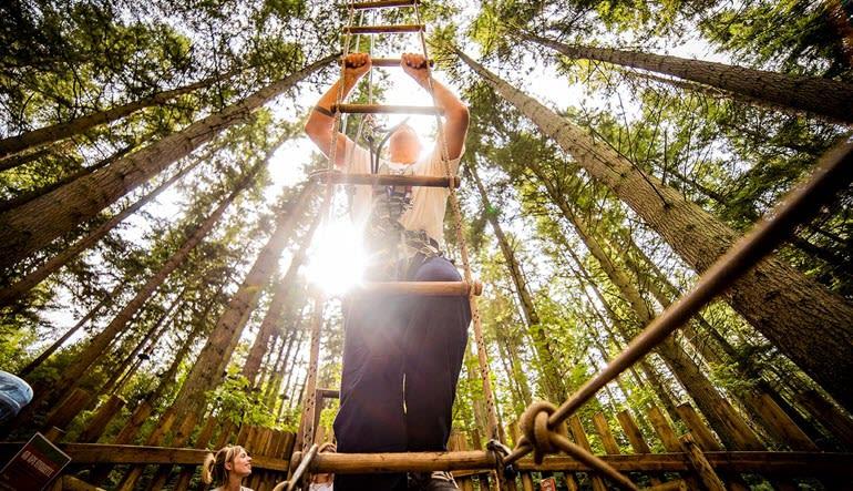 Zipline Treetop Adventure Ladder