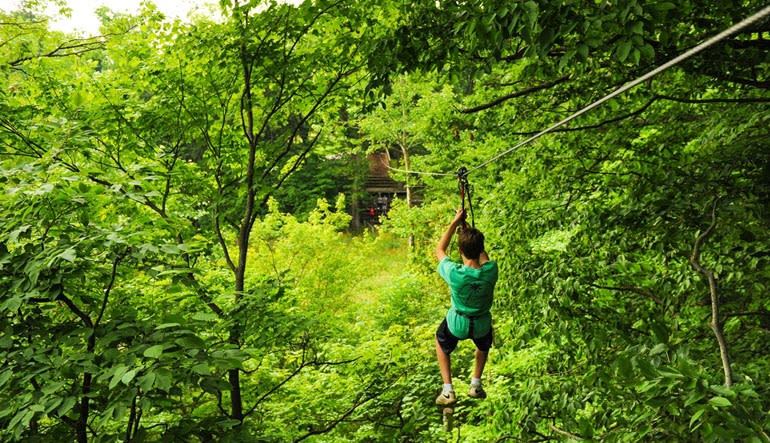 Zipline Treetop Adventure Virginia Zip