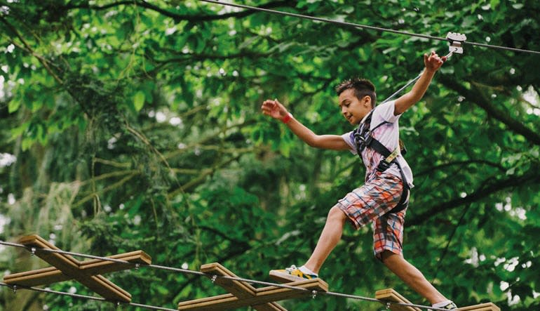 Zipline Treetop Adventure Delaware Child