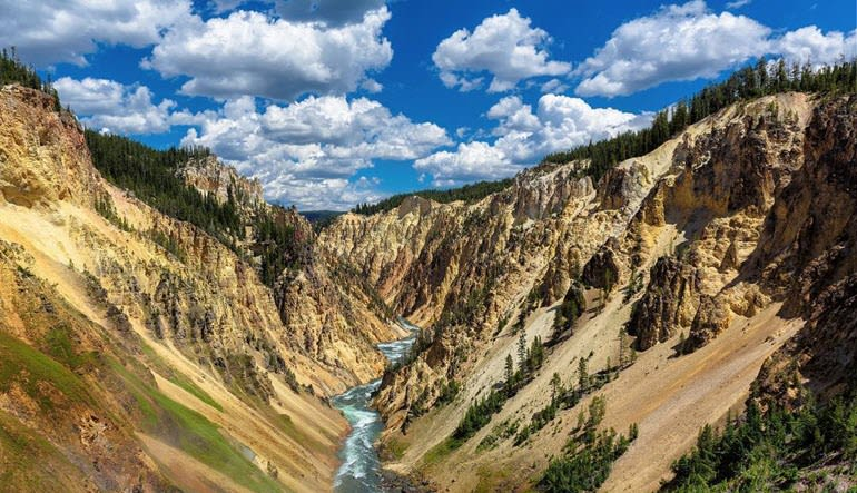 Jackson Hole Full Day Safari, Yellowstone National Park - Full Day