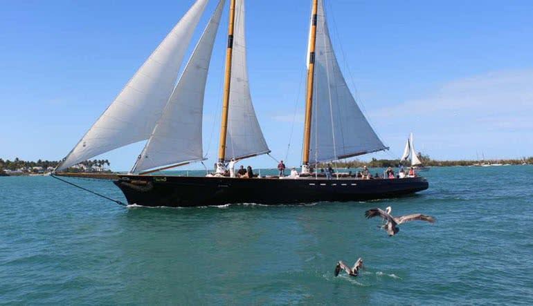 Boston Harbor Day Sail