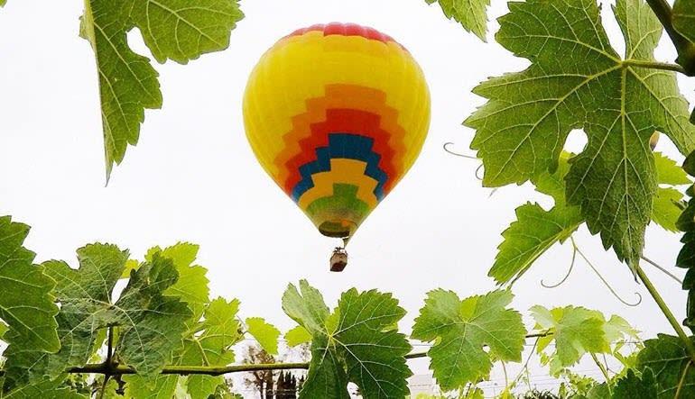 Hot Air Balloon Ride Temecula Vineyard