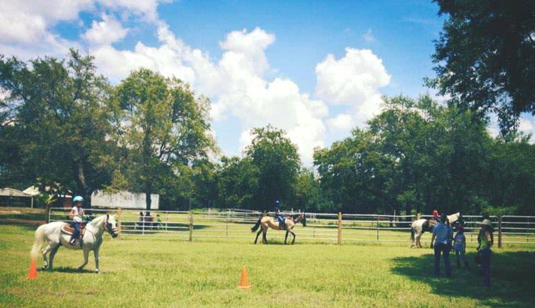 Horseback Riding Orlando Paddock