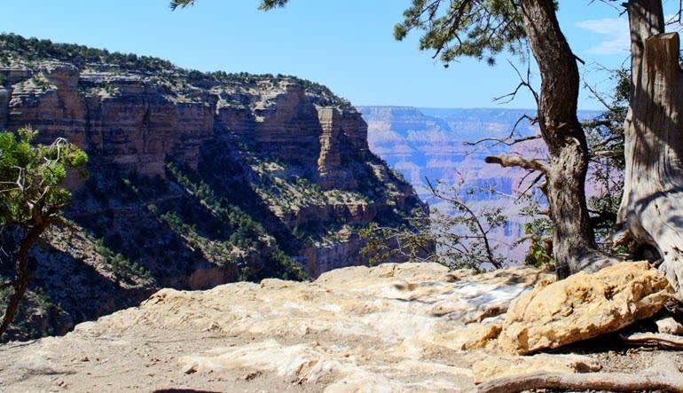 Grand Canyon National Park Bus & Walking Tour Views