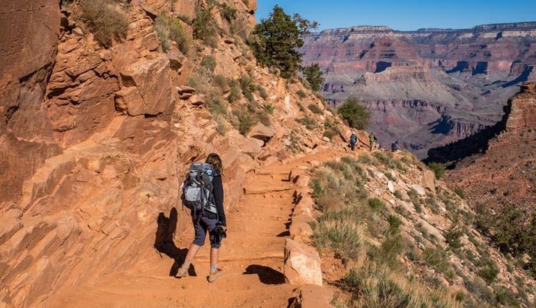 Grand Canyon National Park Bus & Walking Tour