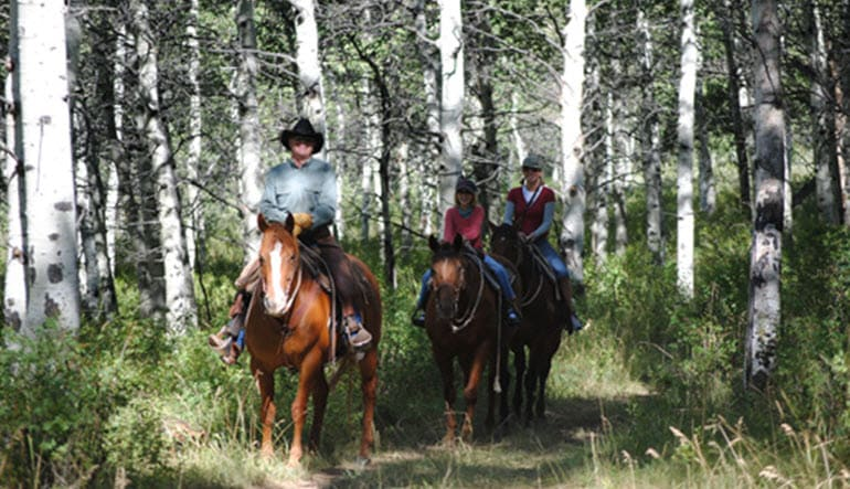 Horseback Riding Park City Leader