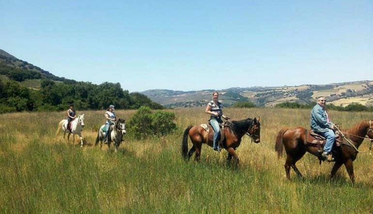 Horseback Riding Santa Cruz Group
