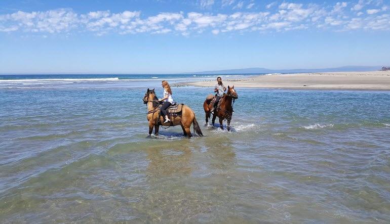 Horseback Riding Santa Cruz Ocean