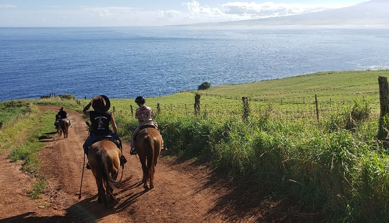 Horseback Riding Maui Sea Views